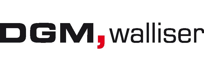 logo walliser